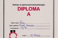 A-Diploma